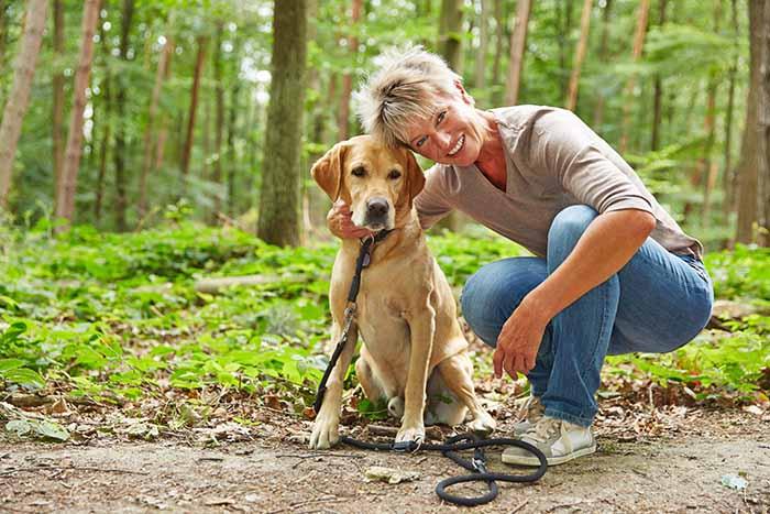 Gått grundkursen? Vi har fortsättningskurs i Nose Work för dig och din hund.